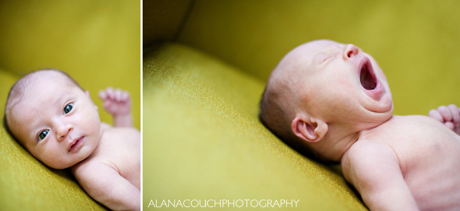 neva-newborn-photographs1