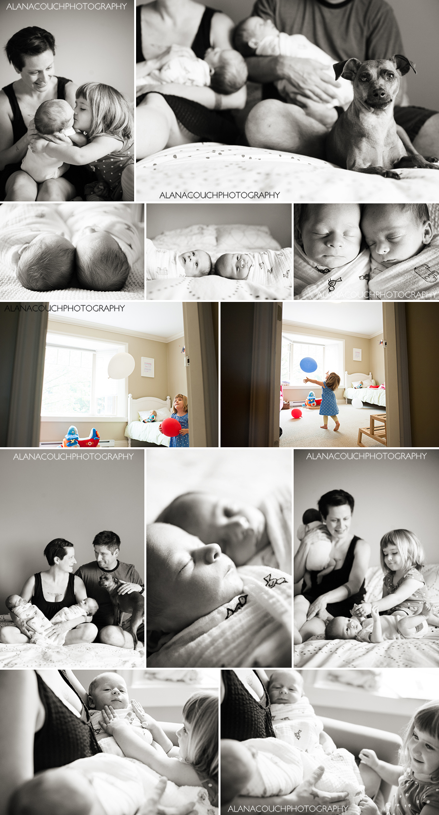 newborn-twin-toddler-boys-dog-vancouver